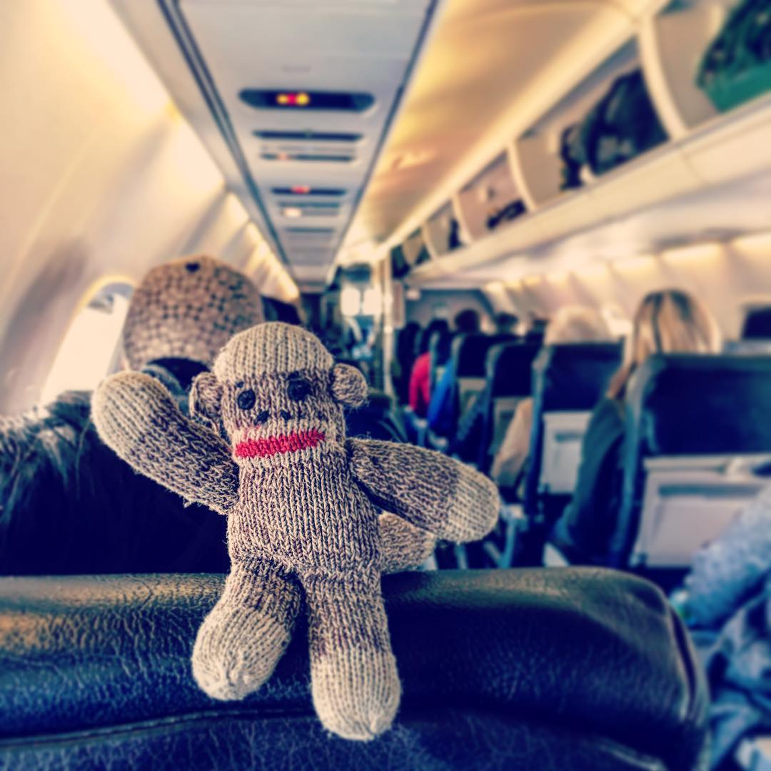 The Travelling Monkey